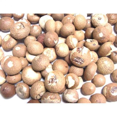 Raw Betelnuts (250 Grams)