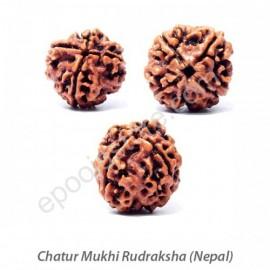 ChaturMukhi Rudraksha ( With Silver Capping )