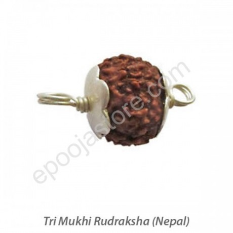 Tri Mukhi Rudraksha With Silver Capping