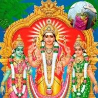 Sri Valli Devasena Sametha Subramanya Swamy Abhishekam (For Every 6 Tuesdays)
