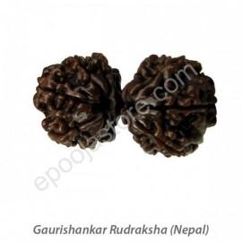 Gowrishankar Rudraksha